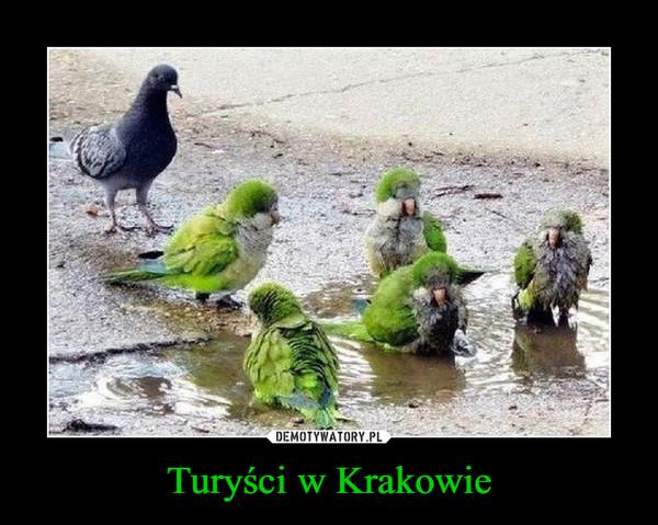 Turyści w Krakowie –