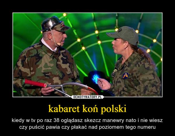 kabaret koń polski – kiedy w tv po raz 38 oglądasz skezcz manewry nato i nie wiesz czy puścić pawia czy płakać nad poziomem tego numeru