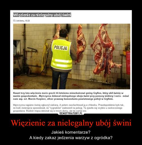 Więzienie za nielegalny ubój świni