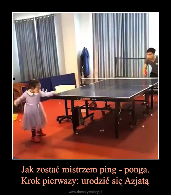 Jak zostać mistrzem ping - ponga.Krok pierwszy: urodzić się Azjatą –