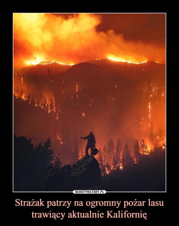 Strażak patrzy na ogromny pożar lasu trawiący aktualnie Kalifornię –