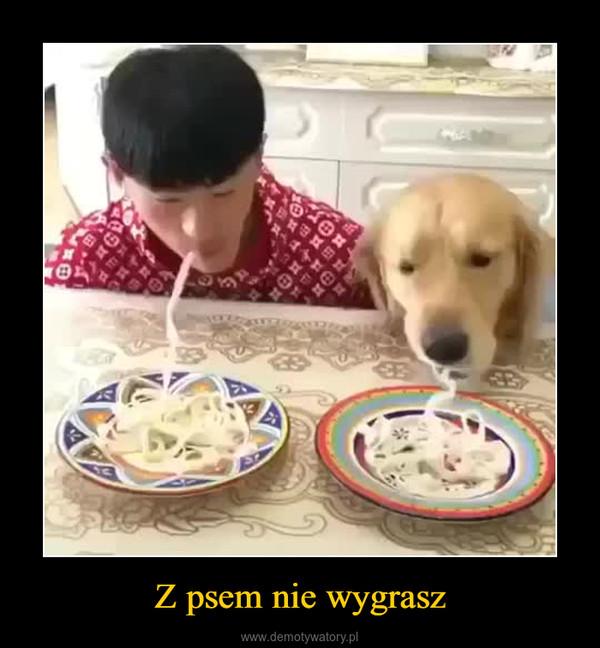 Z psem nie wygrasz –