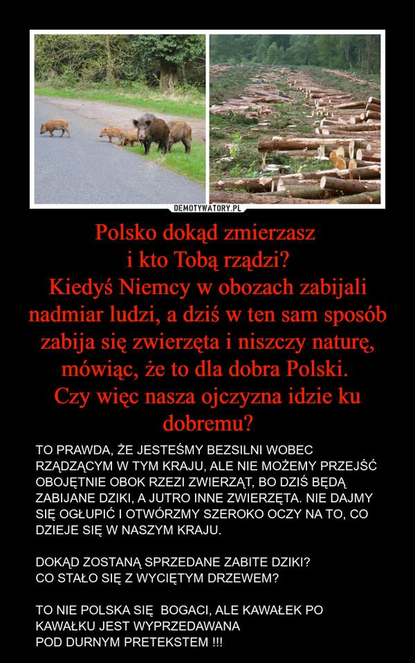 Polsko dokąd zmierzasz i kto Tobą rządzi?Kiedyś Niemcy w obozach zabijali nadmiar ludzi, a dziś w ten sam sposób zabija się zwierzęta i niszczy naturę, mówiąc, że to dla dobra Polski. Czy więc nasza ojczyzna idzie ku dobremu? – TO PRAWDA, ŻE JESTEŚMY BEZSILNI WOBEC RZĄDZĄCYM W TYM KRAJU, ALE NIE MOŻEMY PRZEJŚĆ OBOJĘTNIE OBOK RZEZI ZWIERZĄT, BO DZIŚ BĘDĄ ZABIJANE DZIKI, A JUTRO INNE ZWIERZĘTA. NIE DAJMY SIĘ OGŁUPIĆ I OTWÓRZMY SZEROKO OCZY NA TO, CO DZIEJE SIĘ W NASZYM KRAJU.DOKĄD ZOSTANĄ SPRZEDANE ZABITE DZIKI?CO STAŁO SIĘ Z WYCIĘTYM DRZEWEM?TO NIE POLSKA SIĘ  BOGACI, ALE KAWAŁEK PO KAWAŁKU JEST WYPRZEDAWANA POD DURNYM PRETEKSTEM !!!