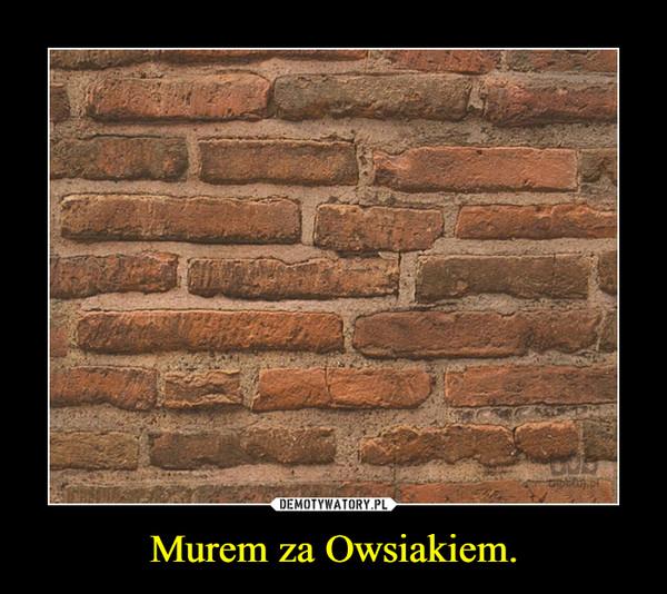 Murem za Owsiakiem. –
