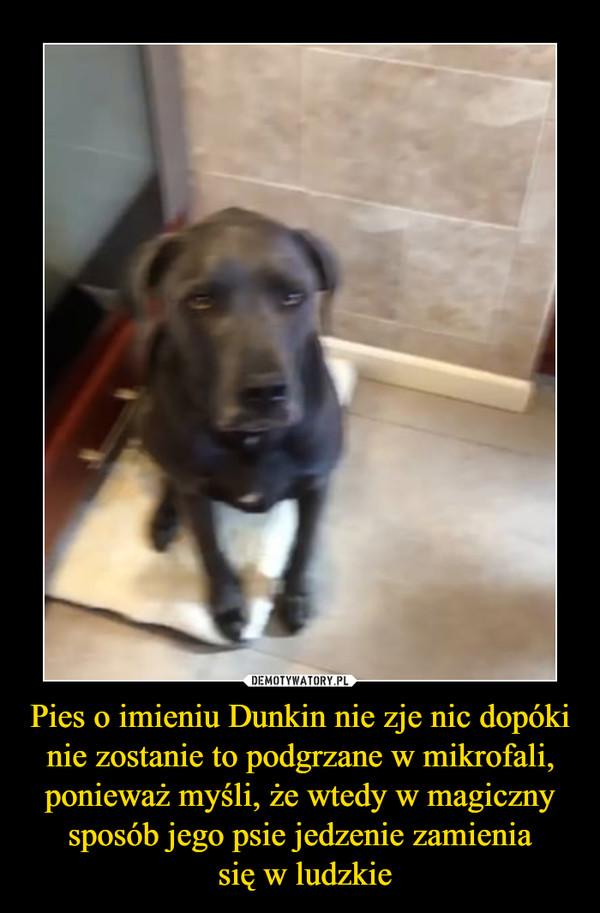 Pies o imieniu Dunkin nie zje nic dopóki nie zostanie to podgrzane w mikrofali, ponieważ myśli, że wtedy w magiczny sposób jego psie jedzenie zamienia się w ludzkie –
