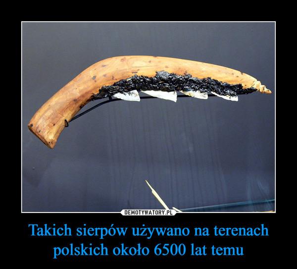 Takich sierpów używano na terenach polskich około 6500 lat temu