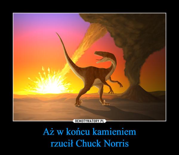 Aż w końcu kamieniemrzucił Chuck Norris –
