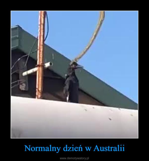 Normalny dzień w Australii –