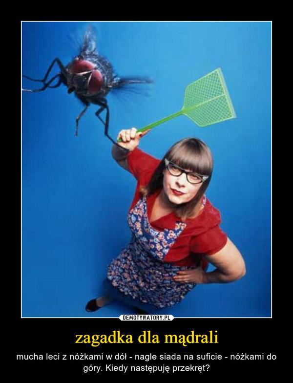 zagadka dla mądrali – mucha leci z nóżkami w dół - nagle siada na suficie - nóżkami do góry. Kiedy następuję przekręt?