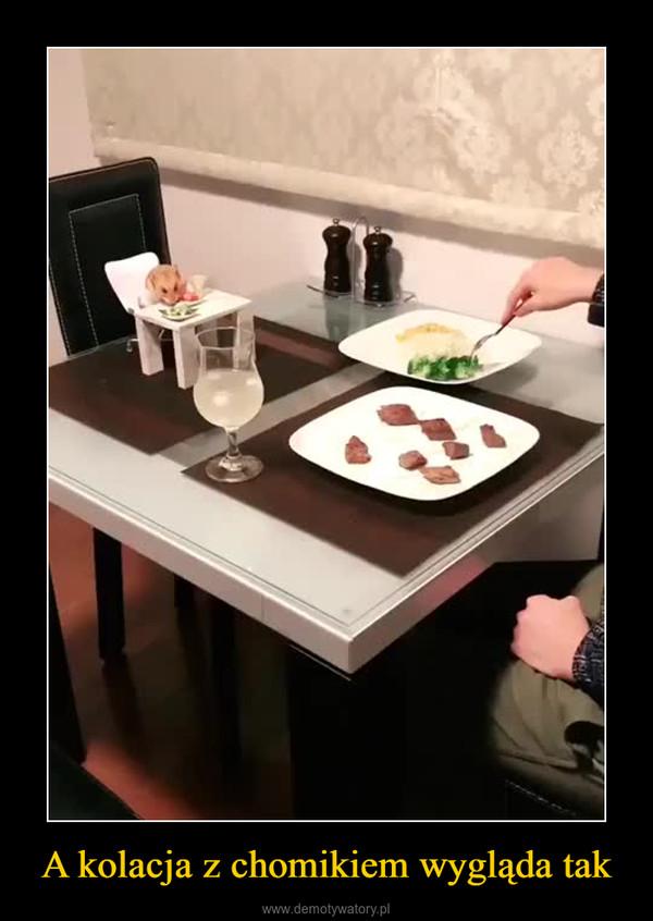 A kolacja z chomikiem wygląda tak –
