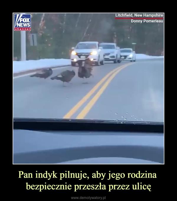 Pan indyk pilnuje, aby jego rodzina bezpiecznie przeszła przez ulicę –