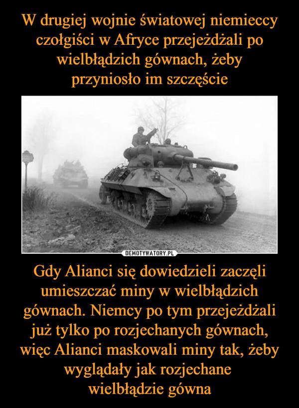 Gdy Alianci się dowiedzieli zaczęli umieszczać miny w wielbłądzich gównach. Niemcy po tym przejeżdżali już tylko po rozjechanych gównach,więc Alianci maskowali miny tak, żeby wyglądały jak rozjechane wielbłądzie gówna –