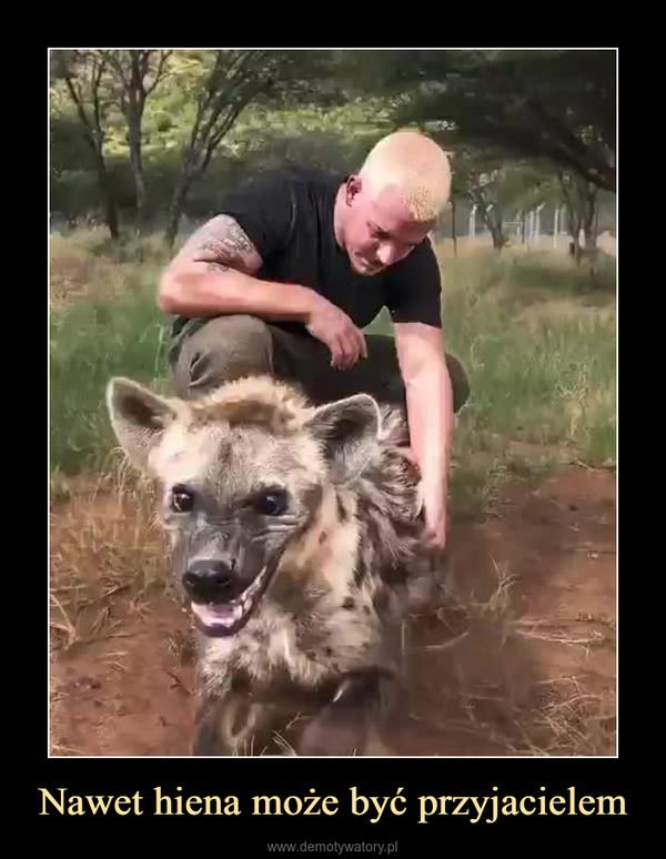 Nawet hiena może być przyjacielem –