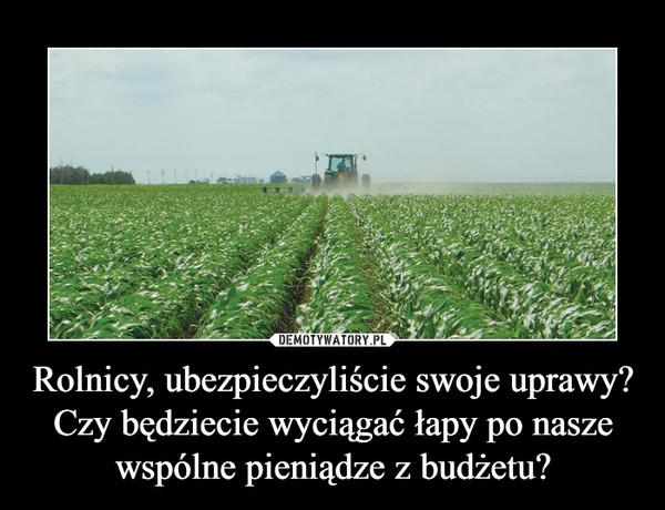 Rolnicy, ubezpieczyliście swoje uprawy?Czy będziecie wyciągać łapy po nasze wspólne pieniądze z budżetu? –