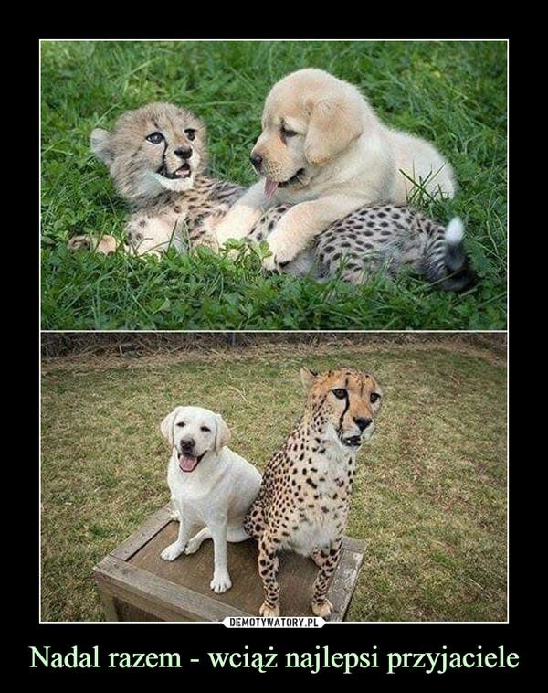 Nadal razem - wciąż najlepsi przyjaciele –