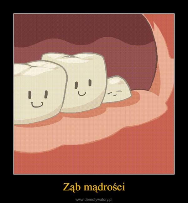 Ząb mądrości –