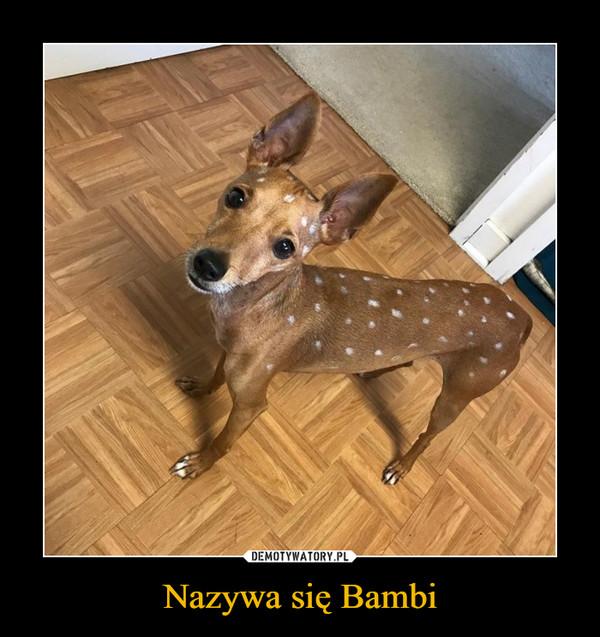 Nazywa się Bambi –