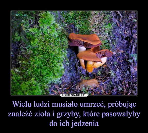 Wielu ludzi musiało umrzeć, próbując znaleźć zioła i grzyby, które pasowałyby do ich jedzenia –