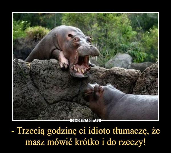 - Trzecią godzinę ci idioto tłumaczę, że masz mówić krótko i do rzeczy! –