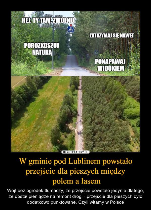 W gminie pod Lublinem powstało przejście dla pieszych między polem a lasem – Wójt bez ogródek tłumaczy, że przejście powstało jedynie dlatego, że dostał pieniądze na remont drogi - przejście dla pieszych było dodatkowo punktowane. Czyli witamy w Polsce