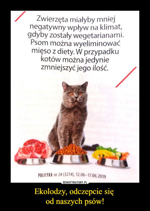 Ekolodzy, odczepcie się od naszych psów! –  Zwierzęta miałyby mniej negatywny wpływ na klimat, gdyby zostały wegetarianami. Psom można wyeliminować mięso z diety. W przypadku kotów można jedynie zmniejszyć jego ilość.