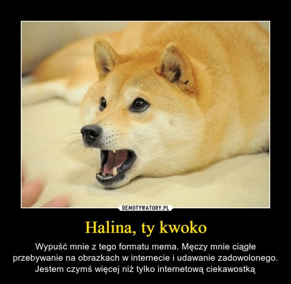 Halina, ty kwoko – Wypuść mnie z tego formatu mema. Męczy mnie ciągłe przebywanie na obrazkach w internecie i udawanie zadowolonego. Jestem czymś więcej niż tylko internetową ciekawostką