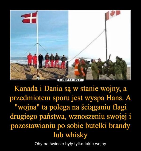 """Kanada i Dania są w stanie wojny, a przedmiotem sporu jest wyspa Hans. A """"wojna"""" ta polega na ściąganiu flagi drugiego państwa, wznoszeniu swojej i pozostawianiu po sobie butelki brandy lub whisky – Oby na świecie były tylko takie wojny"""