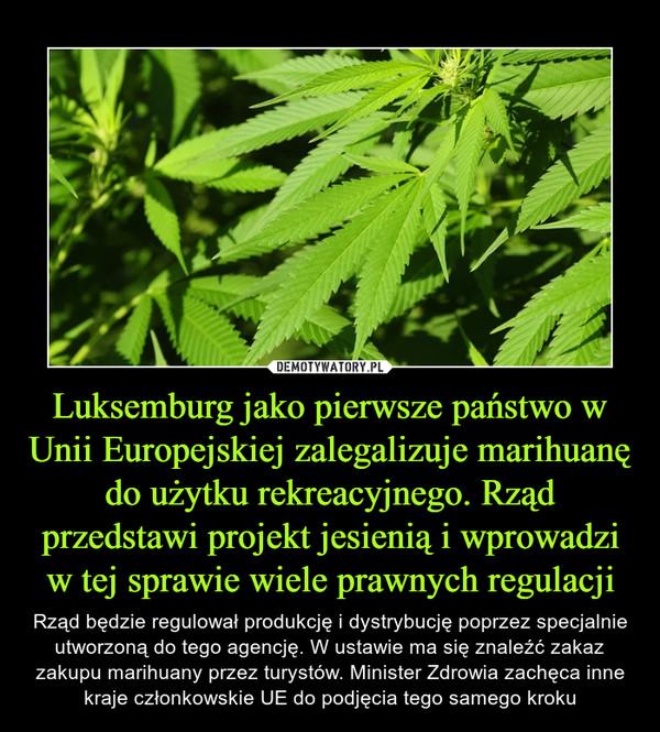 Luksemburg jako pierwsze państwo w Unii Europejskiej zalegalizuje marihuanę do użytku rekreacyjnego. Rząd przedstawi projekt jesienią i wprowadzi w tej sprawie wiele prawnych regulacji – Rząd będzie regulował produkcję i dystrybucję poprzez specjalnie utworzoną do tego agencję. W ustawie ma się znaleźć zakaz zakupu marihuany przez turystów. Minister Zdrowia zachęca inne kraje członkowskie UE do podjęcia tego samego kroku