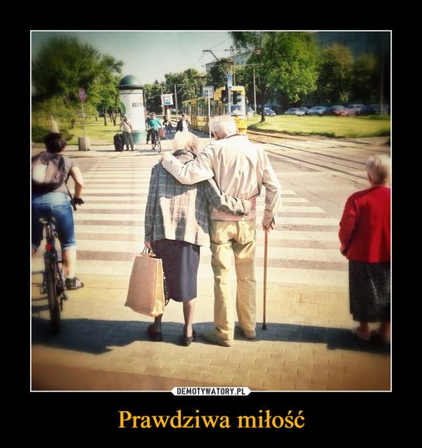 Prawdziwa miłość –