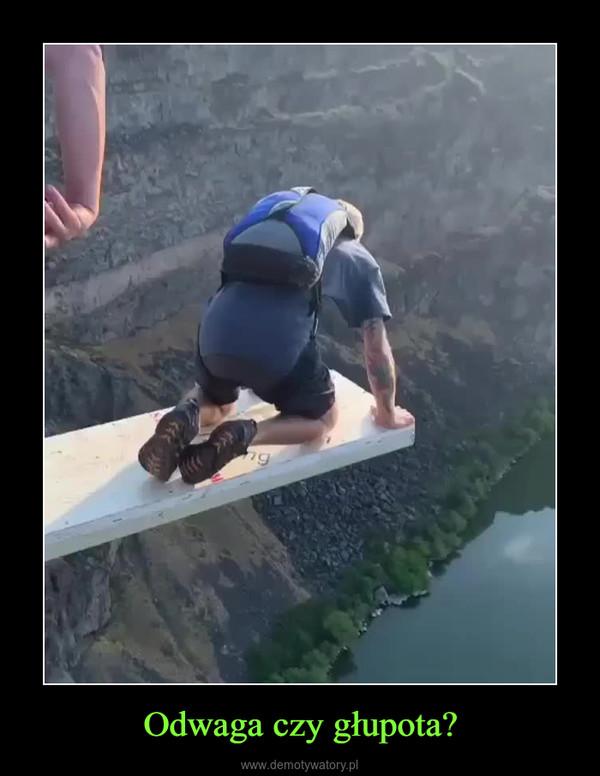 Odwaga czy głupota? –