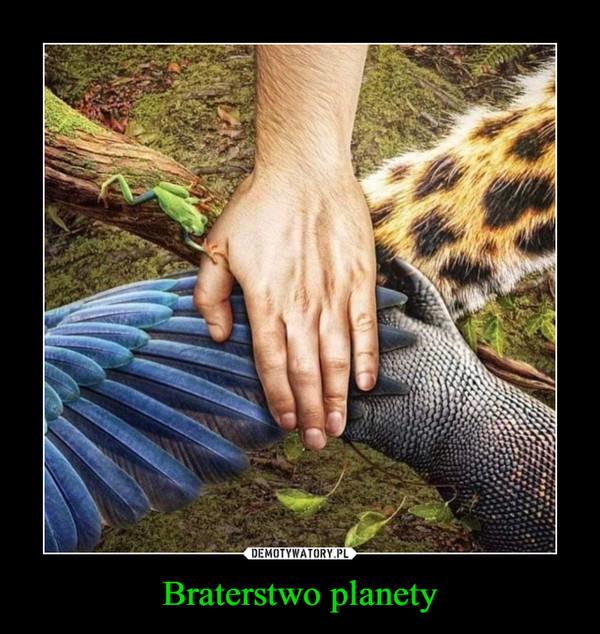 Braterstwo planety –