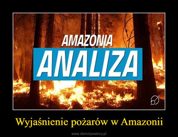Wyjaśnienie pożarów w Amazonii –