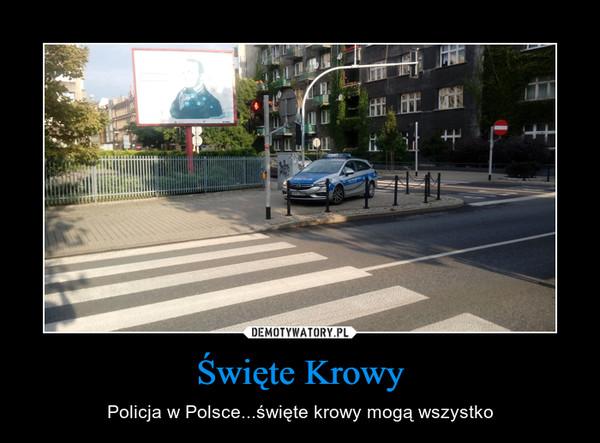 Święte Krowy – Policja w Polsce...święte krowy mogą wszystko