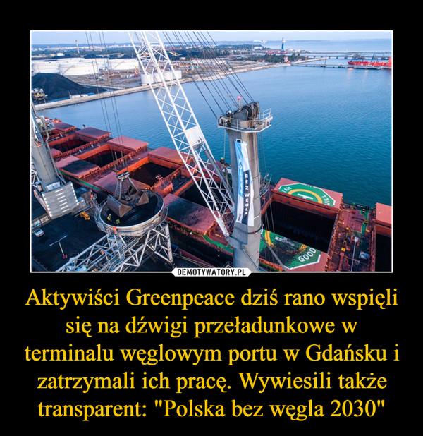 """Aktywiści Greenpeace dziś rano wspięli się na dźwigi przeładunkowe w terminalu węglowym portu w Gdańsku i zatrzymali ich pracę. Wywiesili także transparent: """"Polska bez węgla 2030"""" –"""