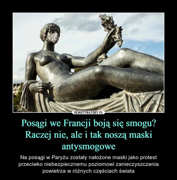 Posągi we Francji boją się smogu? Raczej nie, ale i tak noszą maski antysmogowe – Na posągi w Paryżu zostały nałożone maski jako protest przeciwko niebezpiecznemu poziomowi zanieczyszczenia powietrza w różnych częściach świata