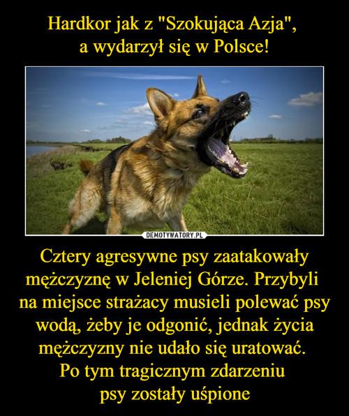 """Hardkor jak z """"Szokująca Azja"""",  a wydarzył się w Polsce! Cztery agresywne psy zaatakowały mężczyznę w Jeleniej Górze. Przybyli  na miejsce strażacy musieli polewać psy wodą, żeby je odgonić, jednak życia mężczyzny nie udało się uratować.  Po tym tragicznym zdarzeniu  psy zostały uśpione"""