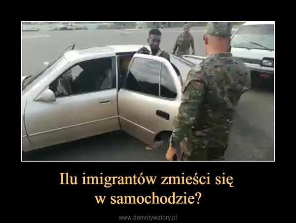 Ilu imigrantów zmieści się w samochodzie? –