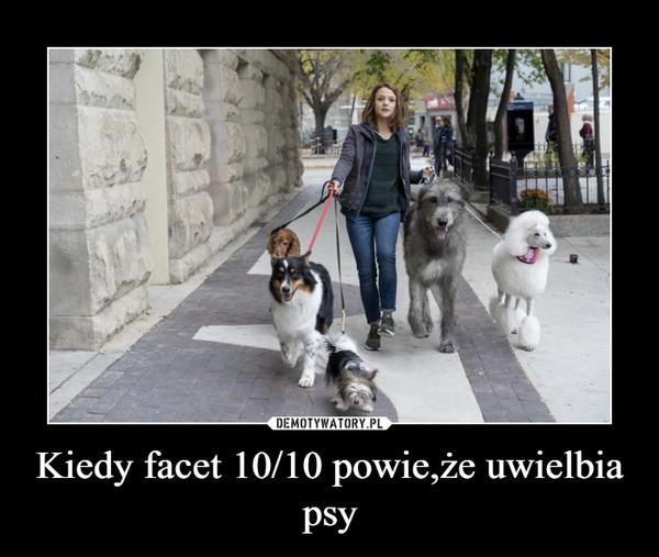 Kiedy facet 10/10 powie,że uwielbia psy –