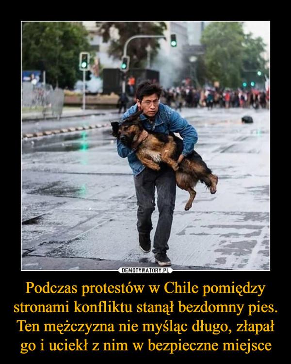 Podczas protestów w Chile pomiędzy stronami konfliktu stanął bezdomny pies. Ten mężczyzna nie myśląc długo, złapał go i uciekł z nim w bezpieczne miejsce –