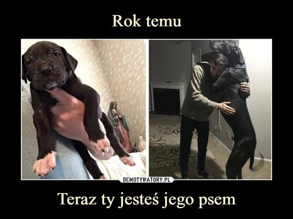 Teraz ty jesteś jego psem –