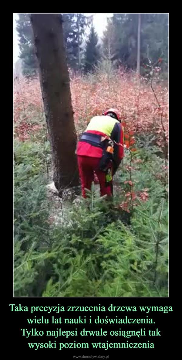 Taka precyzja zrzucenia drzewa wymaga wielu lat nauki i doświadczenia.Tylko najlepsi drwale osiągnęli tak wysoki poziom wtajemniczenia –