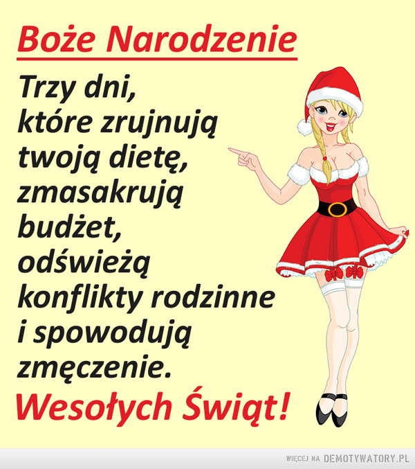 Święta –  Boże NarodzenieTrzy dni,które zrujnujątwoją dietę,zmasakrująbudżet,odświežqkonflikty rodzinnei spowodujązmęczenie.Wesołych Świąt!