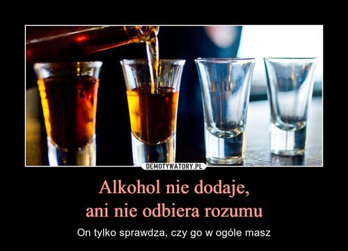 Alkohol nie dodaje, ani nie odbiera rozumu
