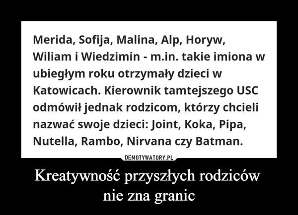 Kreatywność przyszłych rodziców nie zna granic –  Merida, Sofija, Malina, Alp, Horyw, Wiliam i Wiedzimin - m.in. takie imiona w ubiegłym roku otrzymały dzieci w Katowicach. Kierownik tamtejszego USC odmówił jednak rodzicom, którzy chcieli nazwać swoje dzieci: Joint, Koka, Pipa, Nutella, Rambo, Nirvana czy Batman.