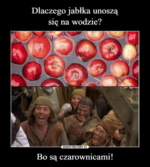 Bo są czarownicami! –