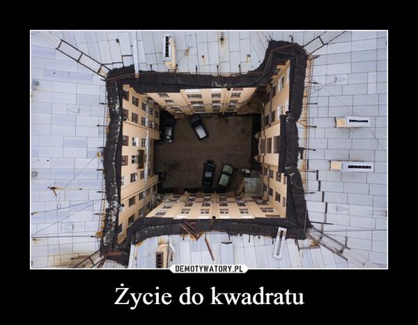 Życie do kwadratu –