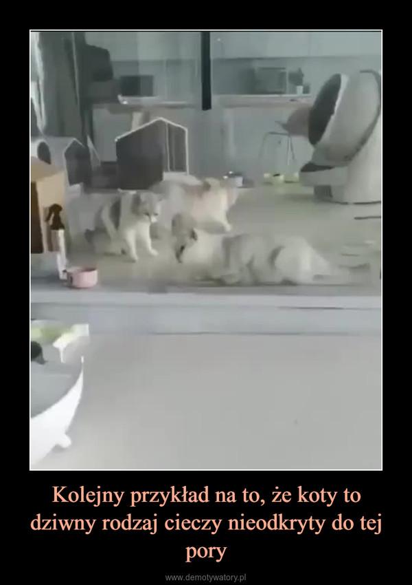 Kolejny przykład na to, że koty to dziwny rodzaj cieczy nieodkryty do tej pory –