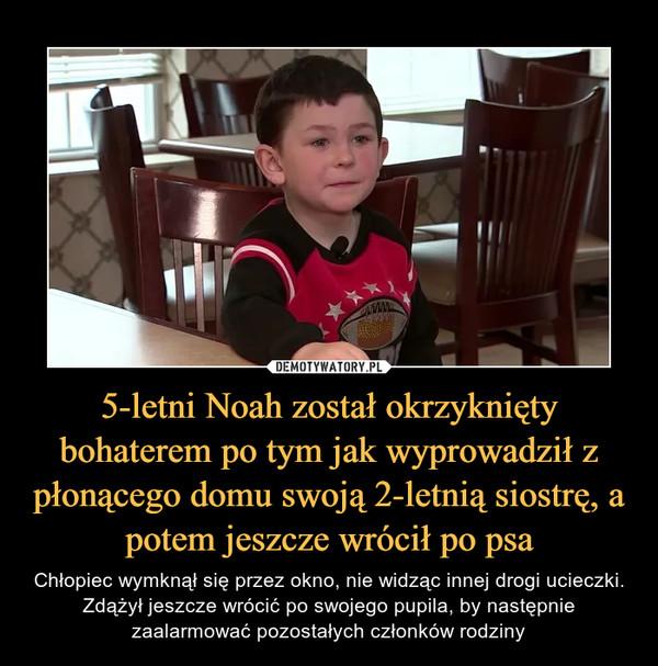 5-letni Noah został okrzyknięty bohaterem po tym jak wyprowadził z płonącego domu swoją 2-letnią siostrę, a potem jeszcze wrócił po psa – Chłopiec wymknął się przez okno, nie widząc innej drogi ucieczki. Zdążył jeszcze wrócić po swojego pupila, by następnie zaalarmować pozostałych członków rodziny