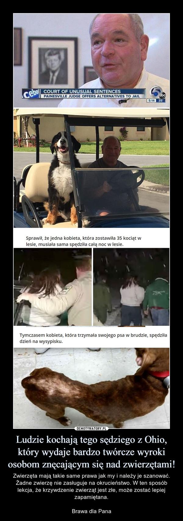 Ludzie kochają tego sędziego z Ohio, który wydaje bardzo twórcze wyroki osobom znęcającym się nad zwierzętami! – Zwierzęta mają takie same prawa jak my i należy je szanować. Żadne zwierzę nie zasługuje na okrucieństwo. W ten sposób lekcja, że krzywdzenie zwierząt jest złe, może zostać lepiej zapamiętana.Brawa dla Pana