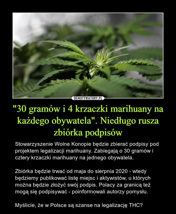 """""""30 gramów i 4 krzaczki marihuany na każdego obywatela"""". Niedługo rusza zbiórka podpisów – Stowarzyszenie Wolne Konopie będzie zbierać podpisy pod projektem legalizacji marihuany. Zabiegają o 30 gramów i cztery krzaczki marihuany na jednego obywatela. Zbiórka będzie trwać od maja do sierpnia 2020 - wtedy będziemy publikować listę miejsc i aktywistów, u których można będzie złożyć swój podpis. Polacy za granicą też mogą się podpisywać - poinformowali autorzy pomysłu. Myślicie, że w Polsce są szanse na legalizację THC?"""